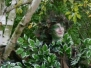 Stilt Walker | Tree Costume