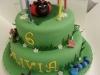 Olivia\' Birthday Cake