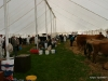 wensleydaleshow2011-10
