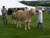 wensleydaleshow2011-5
